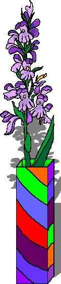 animiertes-orchidee-bild-0006