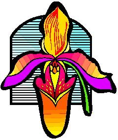 animiertes-orchidee-bild-0009