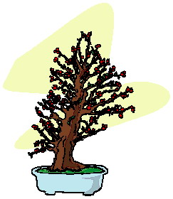 animiertes-bonsai-baum-bild-0003