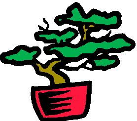 animiertes-bonsai-baum-bild-0004
