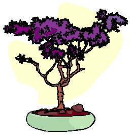 animiertes-bonsai-baum-bild-0005