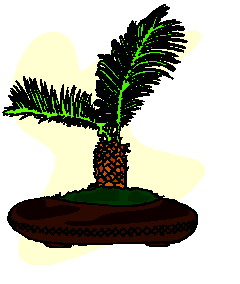 animiertes-bonsai-baum-bild-0007