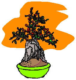 animiertes-bonsai-baum-bild-0012