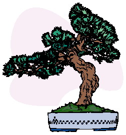 animiertes-bonsai-baum-bild-0013