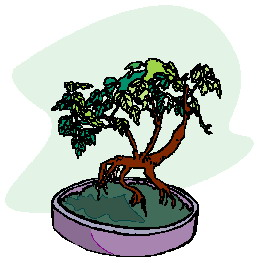 animiertes-bonsai-baum-bild-0024