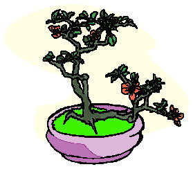 animiertes-bonsai-baum-bild-0026