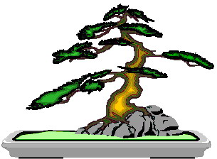 animiertes-bonsai-baum-bild-0029