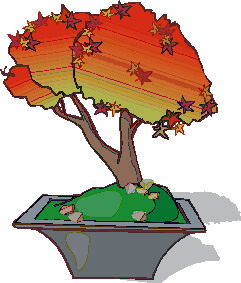 animiertes-bonsai-baum-bild-0033