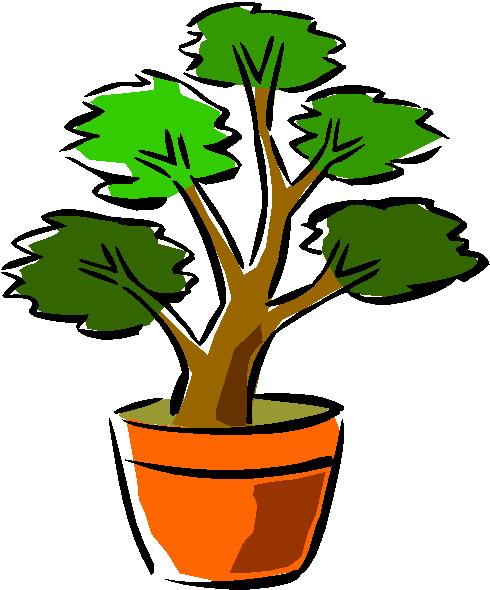 animiertes-bonsai-baum-bild-0037