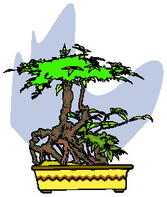 animiertes-bonsai-baum-bild-0039