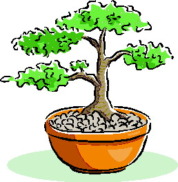 animiertes-bonsai-baum-bild-0040