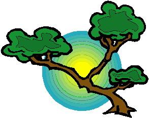 animiertes-bonsai-baum-bild-0041