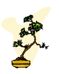 animiertes-bonsai-baum-bild-0046