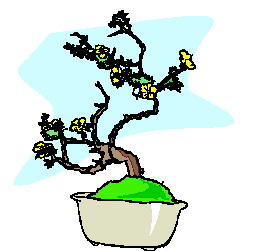 animiertes-bonsai-baum-bild-0047