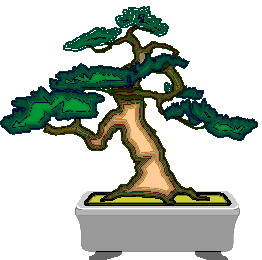 animiertes-bonsai-baum-bild-0048