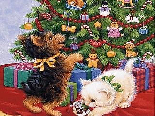 animiertes-weihnachts-tier-bild-0003