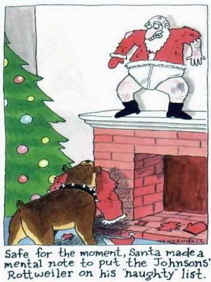 animiertes-weihnachten-spass-humor-bild-0003