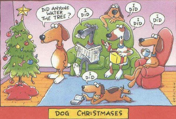 animiertes-weihnachten-spass-humor-bild-0021