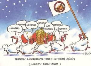animiertes-weihnachten-spass-humor-bild-0025