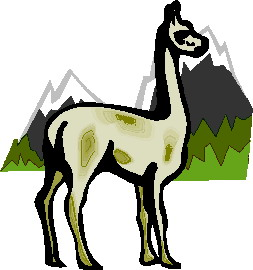 animiertes-lama-bild-0007