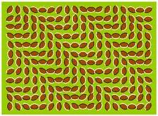 animiertes-optische-taeuschung-illusion-bild-0001