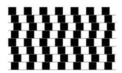 animiertes-optische-taeuschung-illusion-bild-0002