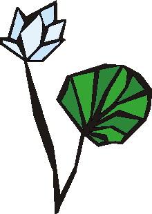 animiertes-wasserlilie-bild-0021