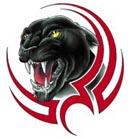animiertes-panther-bild-0002