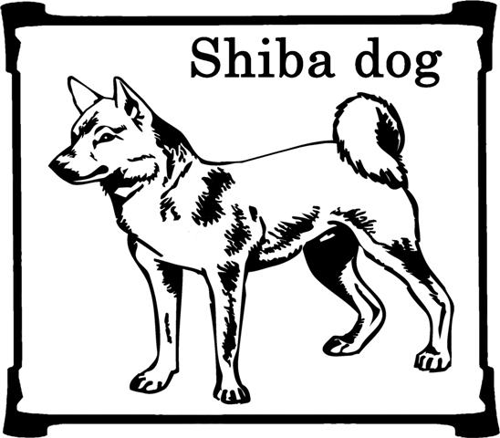 animiertes-shiba-bild-0006
