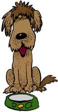 animiertes-hundefutter-bild-0001