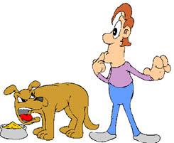animiertes-hundefutter-bild-0019