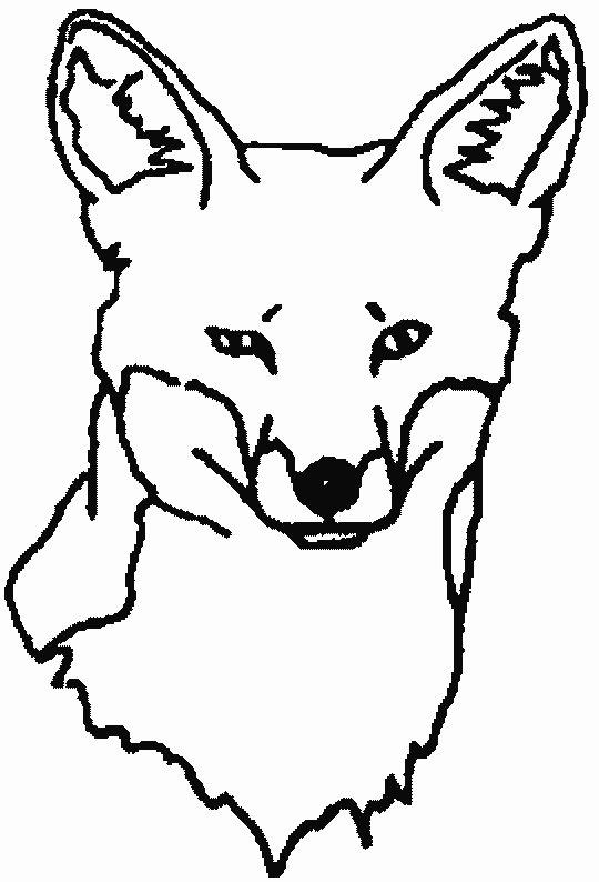 Fuchs Ausmalbilder Malvorlagen Animierte Bilder Gifs