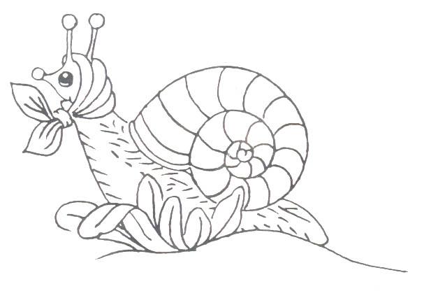 animiertes-insekt-ausmalbild-malvorlage-bild-0013