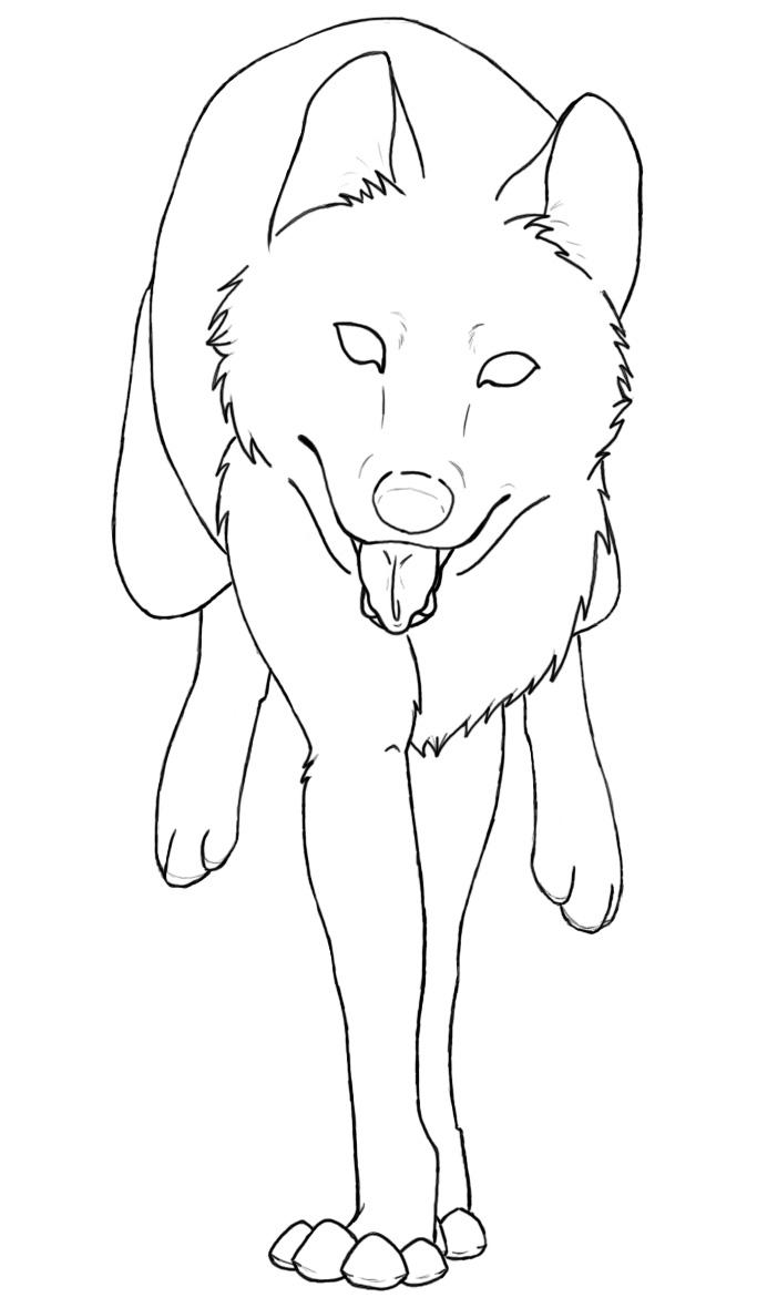 hase und wolf ausmalbilder
