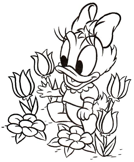 animiertes-donald-duck-ausmalbild-malvorlage-bild-0007