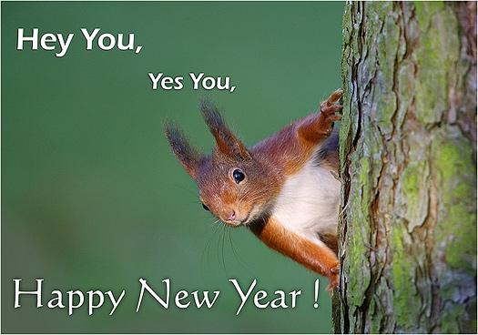 animiertes-neujahr-bild-0228