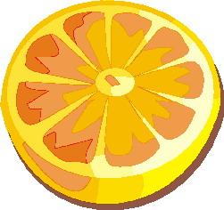 animiertes-orange-bild-0024