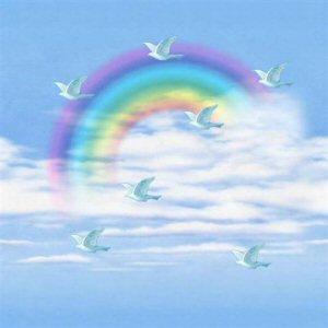 animiertes-regenbogen-bild-0093