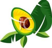 animiertes-avocado-bild-0019