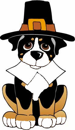 animiertes-berner-sennenhund-bild-0001