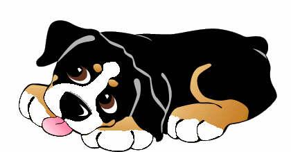 animiertes-berner-sennenhund-bild-0207