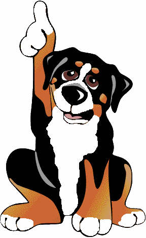 animiertes-berner-sennenhund-bild-0264