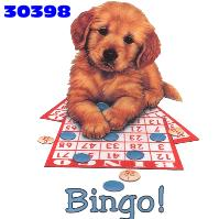 animiertes-bingo-bild-0025